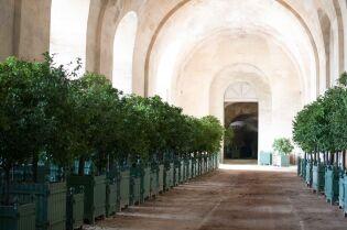Orangerie versailles - Creperie passage des deux portes versailles ...